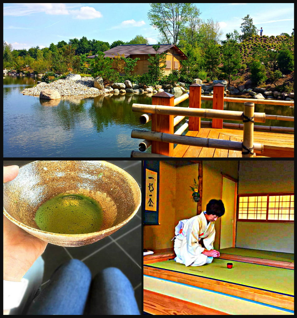 Japanese Gardens Tea House and Tea Ceremony Meijer Gardens Adventure Dragon