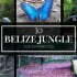 Searching for Jaguars — Belize Jungle Top Ten featuring the Cockscomb Basin Wildlife Sanctuary