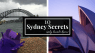 The Sydney Opera House is Not White - 10 Sydney Secrets known only by Locals ( plus a One Day Travel Itinerary )