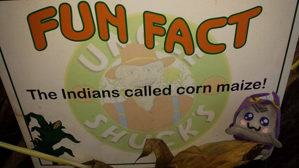 Uncle Shuck's Corn Maze Uncle Shuck's Corn Maze Georgia Fun Fact 2