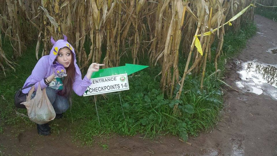 Uncle Shuck's Corn Maze Georgia Entrance Checkpoints 1 to 6