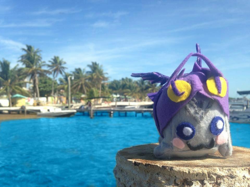 Adventure Dragon in Caye Caulker Belize