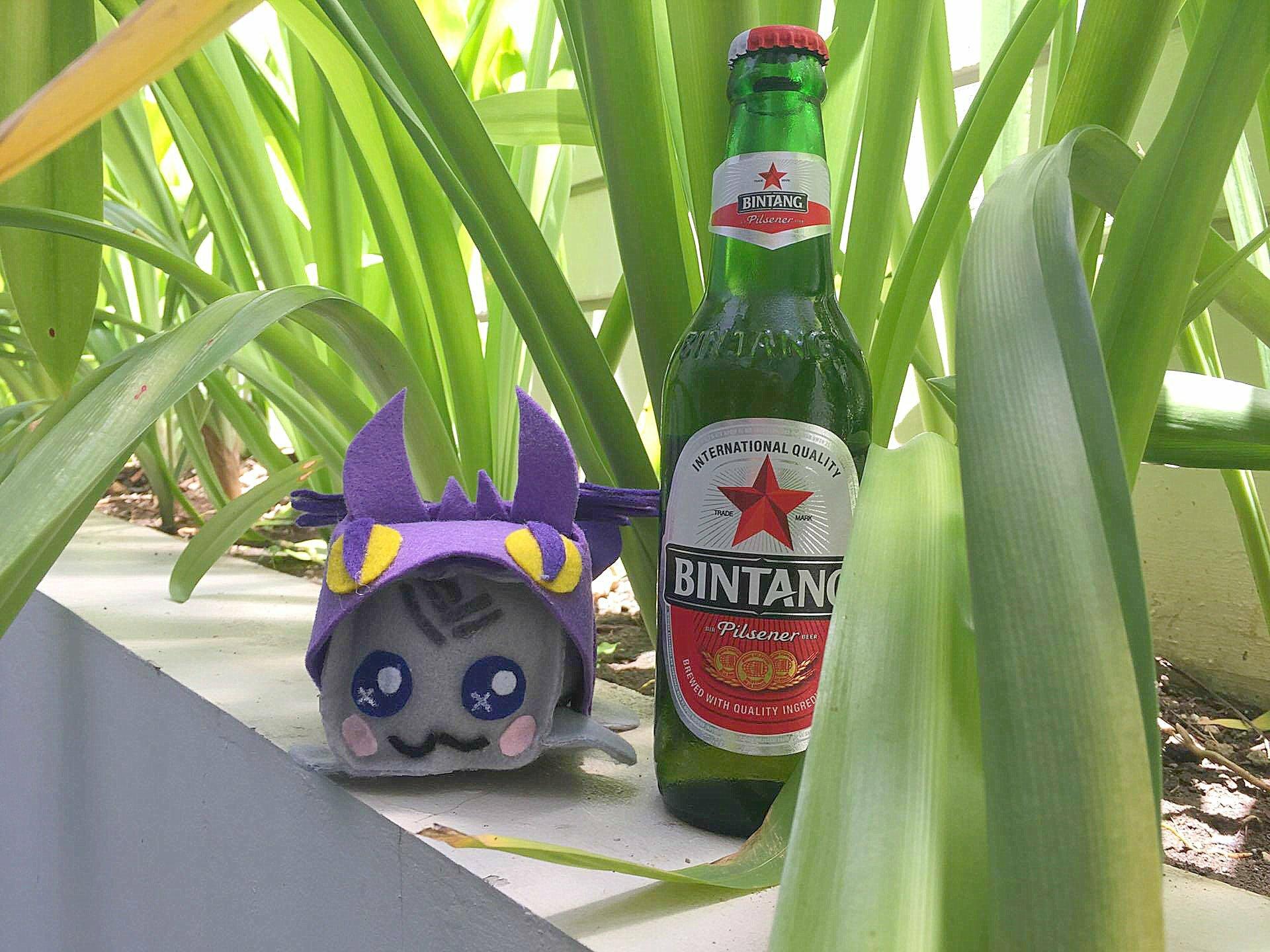 Bali Beer Bintang - Bali top 10 | Bali Itinerary