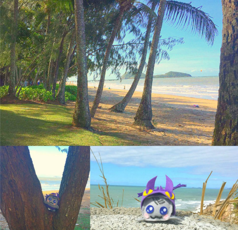 Palm Cove Beach - Most Beautiful Places in Australia Photos