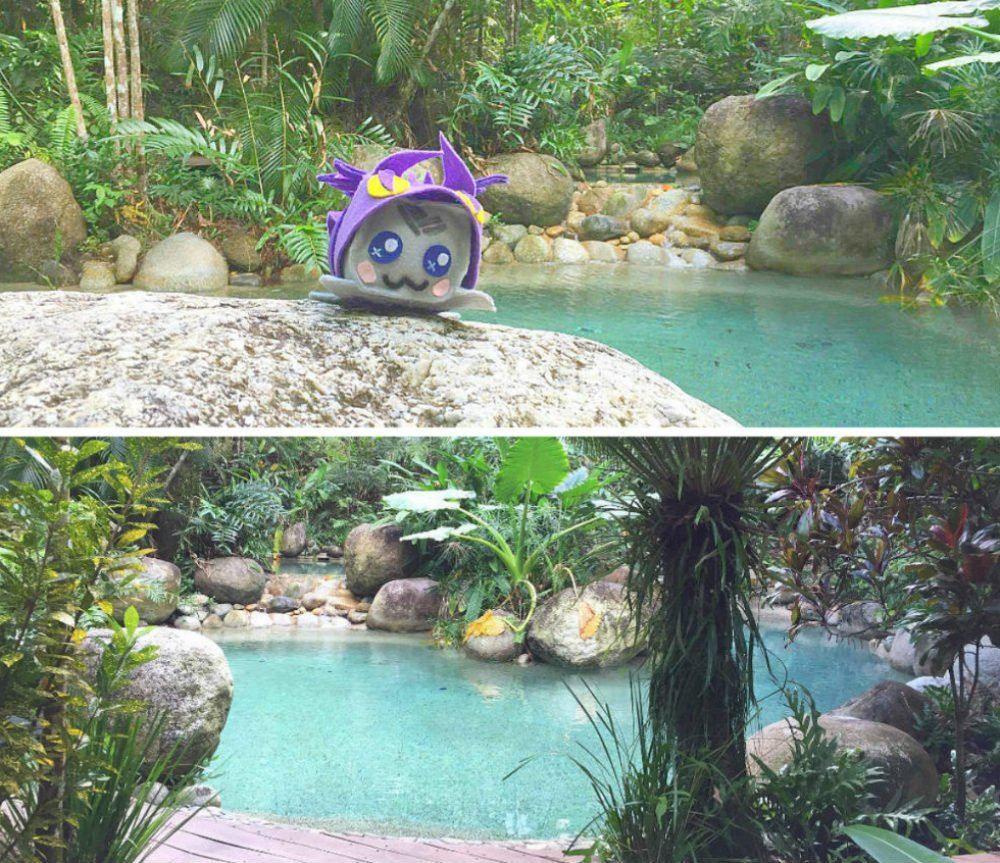 Daintree Rainforest Treehouse Lagoon Semi Private Pool - Most Beautiful Places in Australia