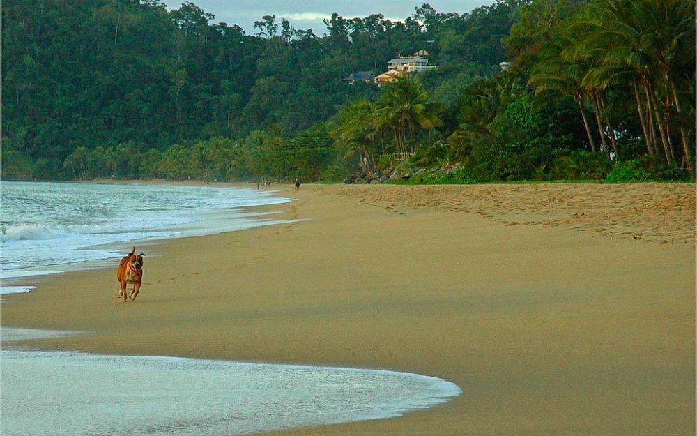 best beaches in Cairns beaches Trinity Beach