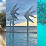 Best Things to Do in Cairns Australia Tourist Attractions