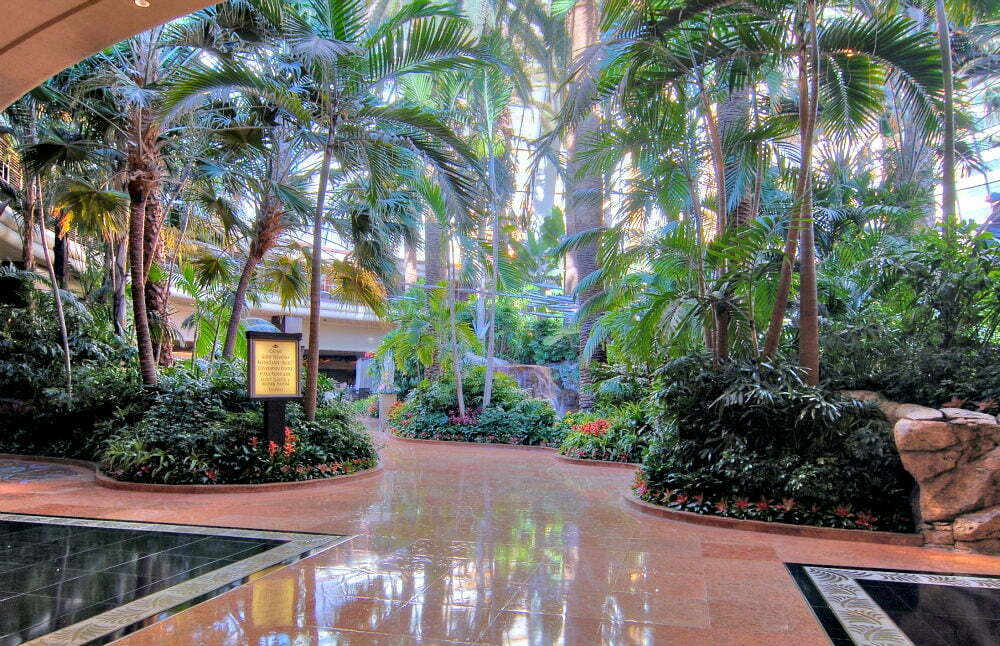 100 Free Things to do in Las Vegas - Mirage Atrium Rainforest