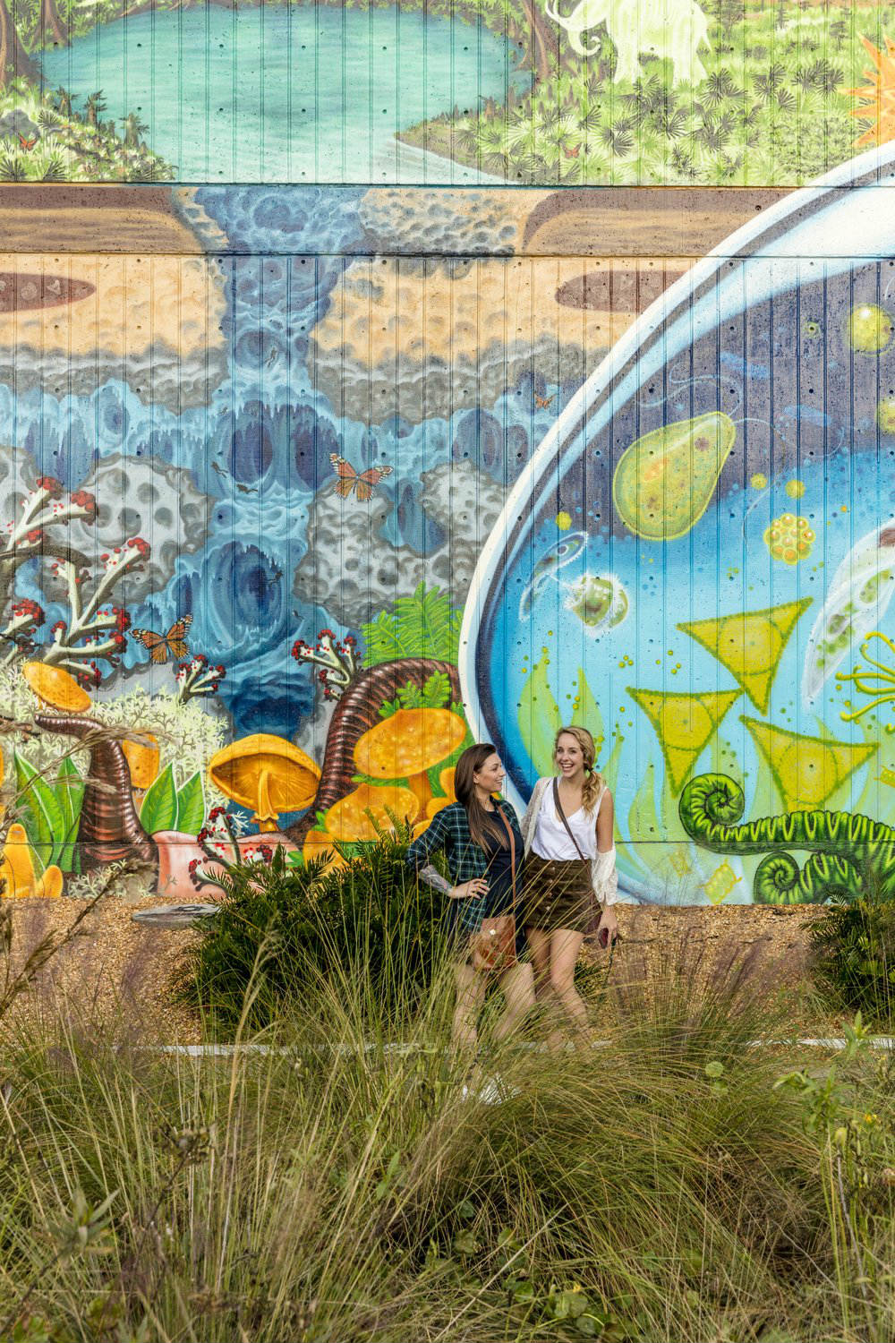 Best Free Attractions in Jacksonville FL - Free Art Murals in Downtown Jacksonville