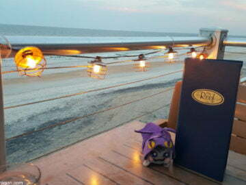 The Reef St Augustine Restaurant on the Water Review