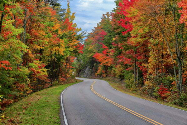 Fall in Foothills Parkway - The Prettiest Road Trip in Tennessee in the Fall