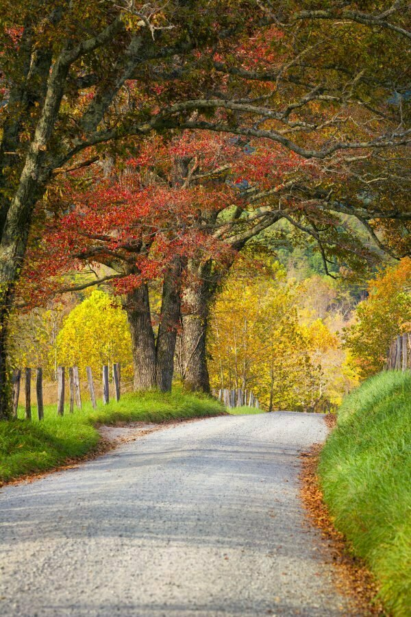 Cades Cove Loop - A Short & Easy Tennessee Road Trip in the Fall